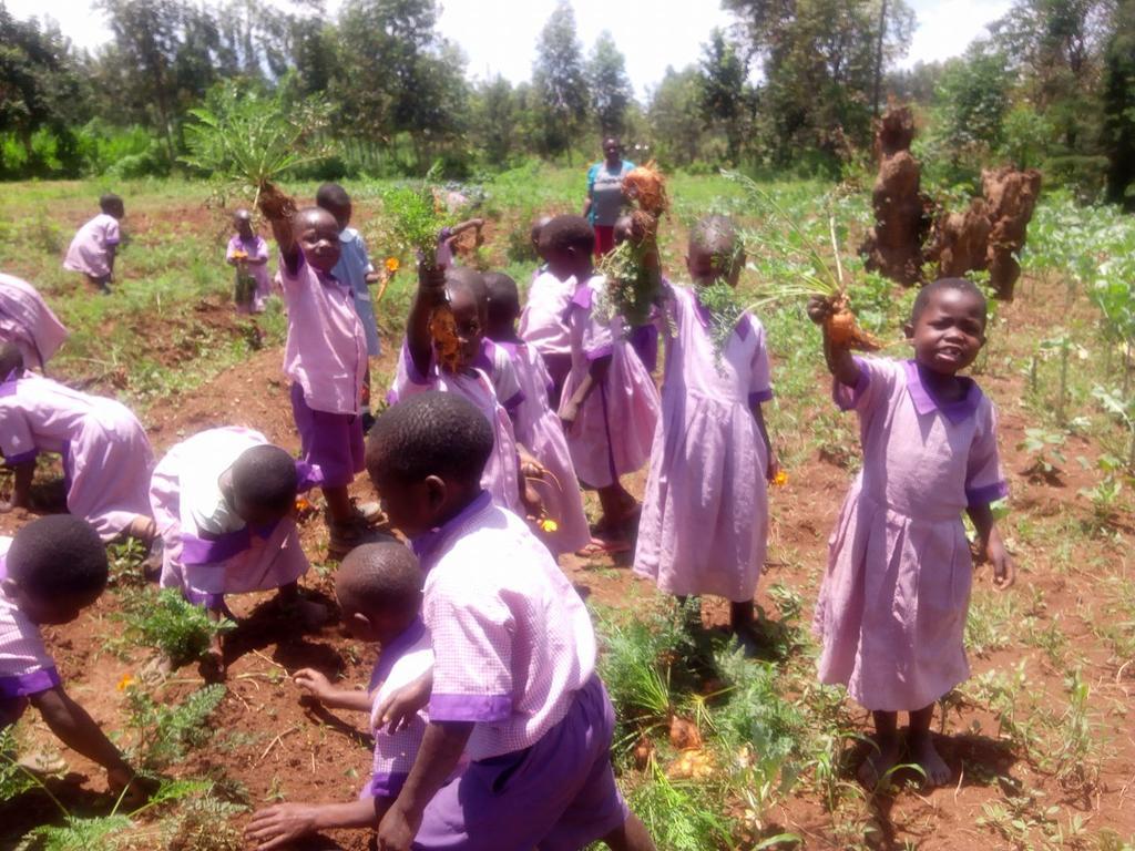 Kinder bei der Gemüseernte