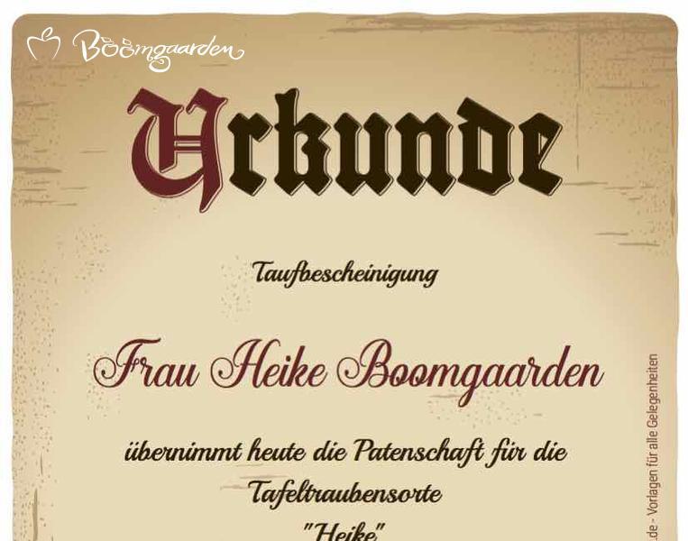 HeikeBoomgaarden_Urkunde